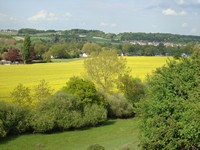 images/PUB-WALK-IMAGES/Berkshire/Cookham/Jolly-Farmer/Jolly-Farmer_Cookham-Dean_Walk-200.jpg